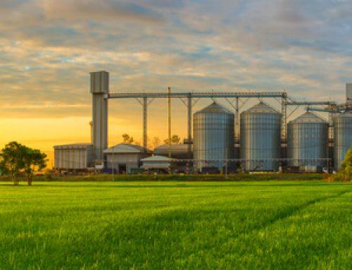 Understanding Grain Storage Issues