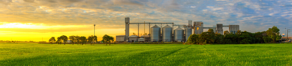 Issues With Grain Storage