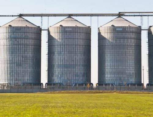 Preventing Mold and Decay in Your Grain Storage System